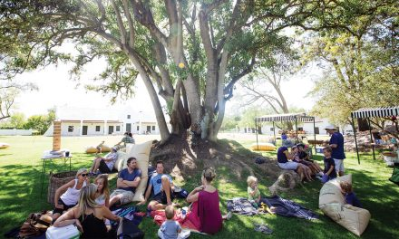 A day out at Spier Wine Farm – in Gauteng!