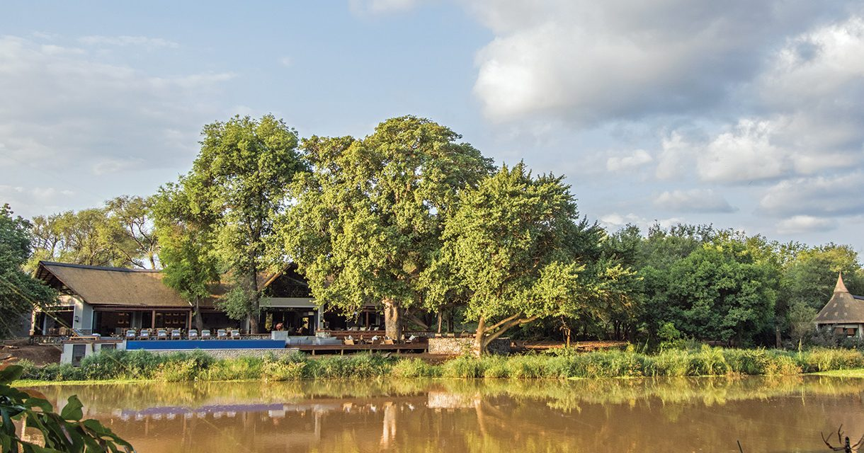 Introducing Abelana Game Reserve – Limpopo's Newest Safari Destination